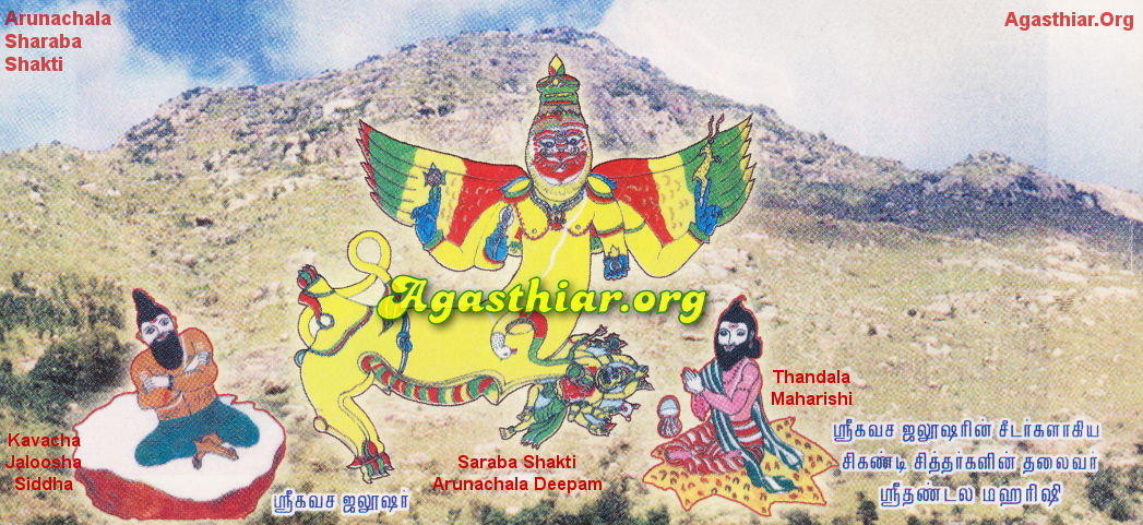 Sri Sarabesvara -- Part 5 of 6 -- Agasthiar Org
